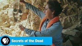 Egypt's Darkest Hour   Secrets of the Dead   PBS