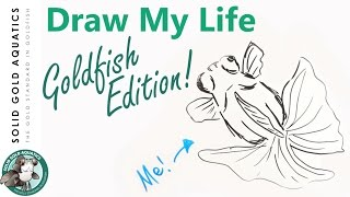 A Happy Draw My Life // GOLDFISH EDITION
