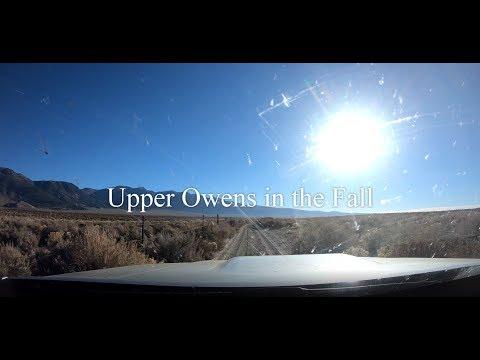Upper Owens  River Fall Fishing