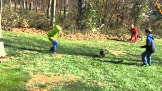 Poodle Rescued, 5 Years In A Nc Puppy Mill Cage, Bono Now Running With Boys