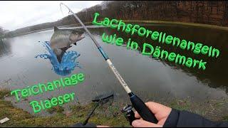 #68 Meine Ersten Besuche bei der Teichanlage-Blaeser in Oberelbert am Raubfischteich / Lachsforellen
