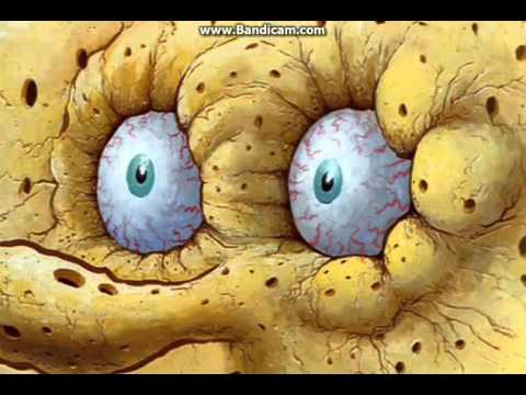 SpongeBob SquarePants - I don't need it