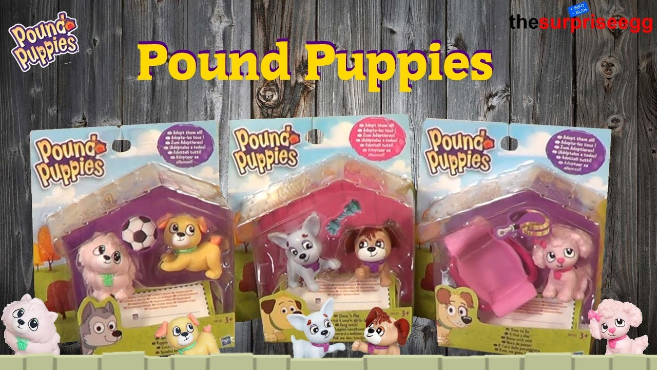 Pound A Ball Toy Toys : Pound puppies pup sets chase n play frisky time to go