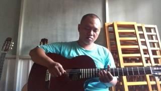 Trái tim mùa đông _ Don Hồ Guitar VN