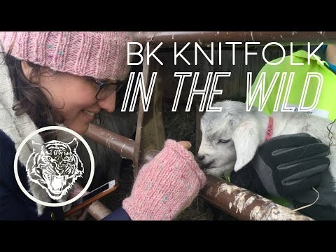 2016 Washington County Farm & Fiber Tour: BK KNITFOLK IN THE WILD
