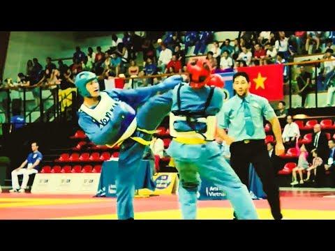Vovinam - Vietnamese Martial Art