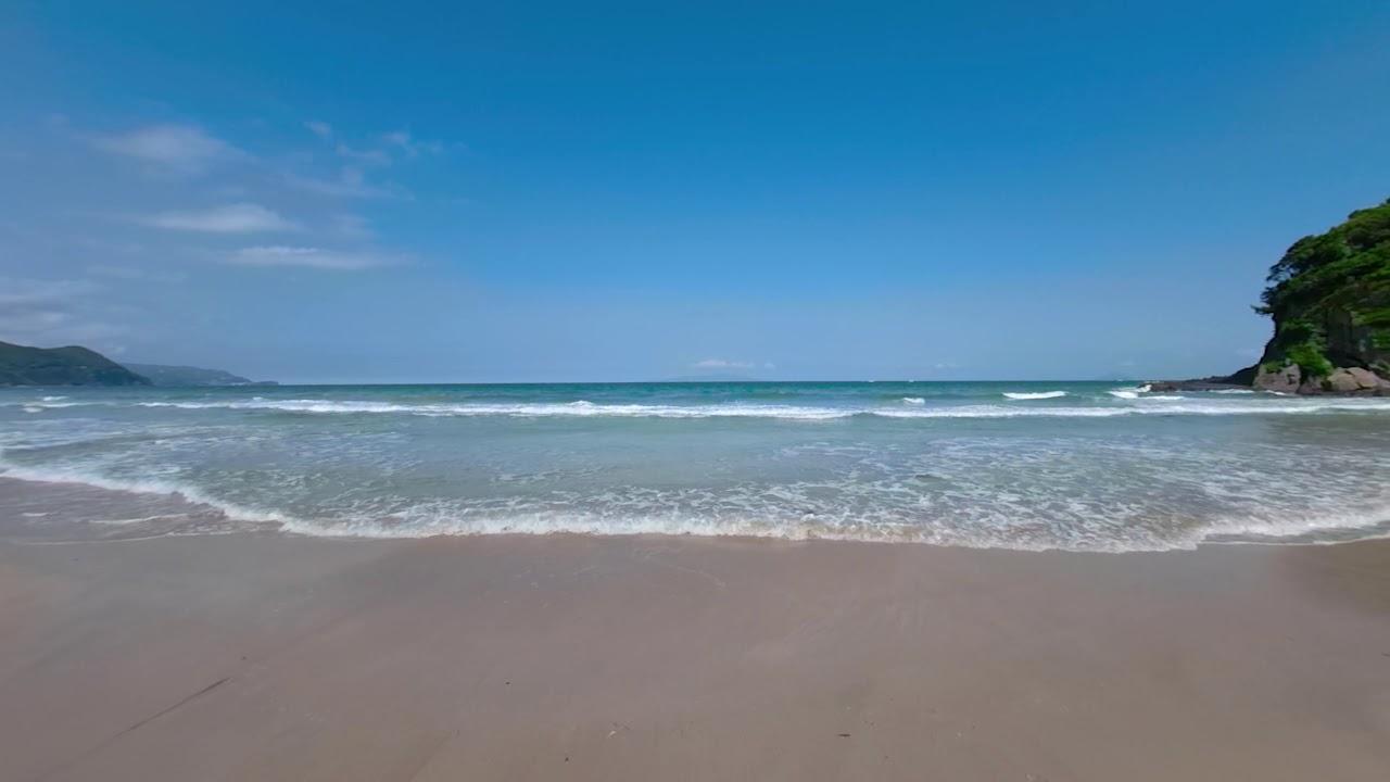 海水 白浜 浴場 大浜
