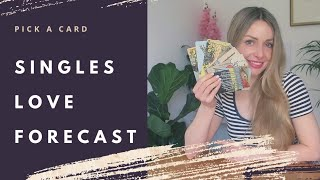 What's Next In Love? SINGLES LOVE FORECAST Pick a Card Tarot (Timeless)