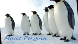 نغمة رقصة البطريق كاملة🐧🐧