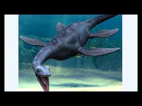 картинки чужых хищников и динозавров