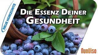 Die Essenz Deiner Gesundheit - Jutta Suffner