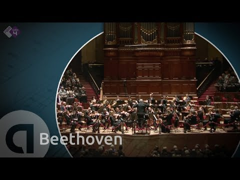 Beethoven: Symphony no. 3 Eroica - Philippe Herreweghe - Full concert in HD