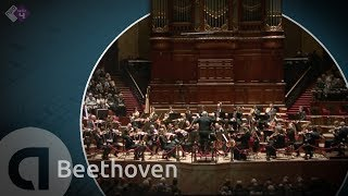 Beethoven: Symphony no. 3 Eroica - Philippe Herreweghe [HD]