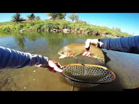 Fly fishing - Augusta County Va - Sept. 2016