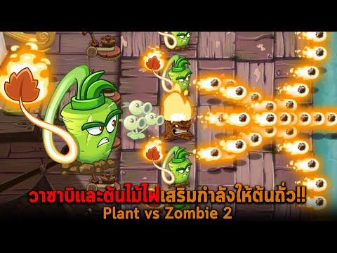 วาซาบิและต้นไม้ไฟเสริมกำลังให้ต้นถั่ว Plant vs Zombie 2