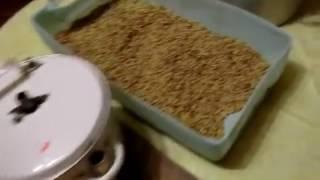 Самогон из сахарной браги с подкормкой зелёным солодом