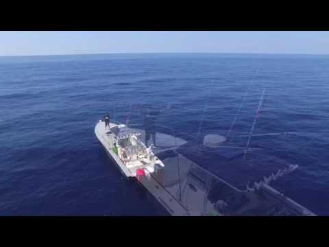 Offshore fishing trip in the Gulf of Mexico