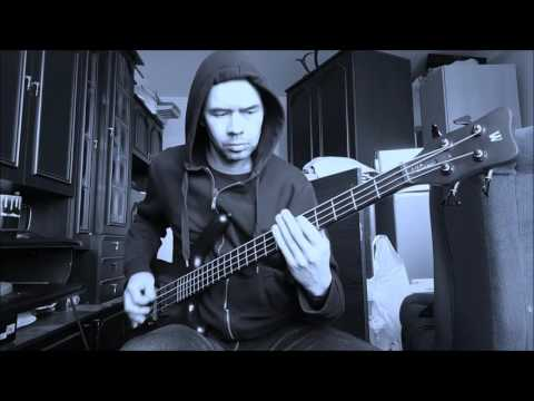 Neglected Fields  Confusion  bass playthrough