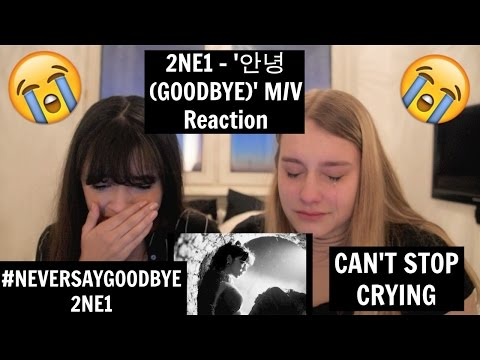 2NE1 - '안녕 (GOODBYE)' M/V Reaction | [THE TEARS WONT STOP]