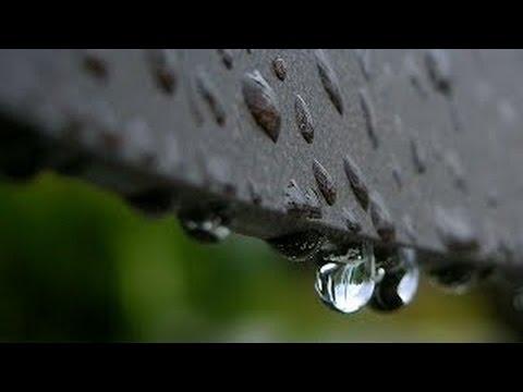 Bruit de la Pluie Pour un Sommeil Profond ~  Relaxation Etude Lecture Méditation Spa (3 Heures)