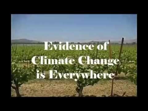 Feature Film Doc by Paige Donner Wine & Climate Change Film Pitch Synopsis