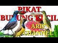 Suara Pikat Burung Kecil Ribut  Mp3 - Mp4 Download