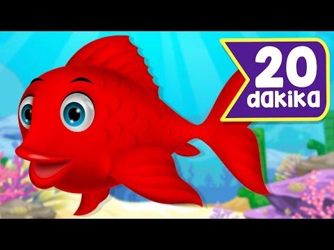 KIRMIZI BALIK + En Sevilen Çocuk Şarkıları   20 Dakika Çocuk Şarkısı