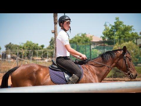 Mitzvah horses