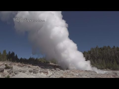 Yellowstone Steamboat Geyser a 11th Time Throwing Rocks into the Sky