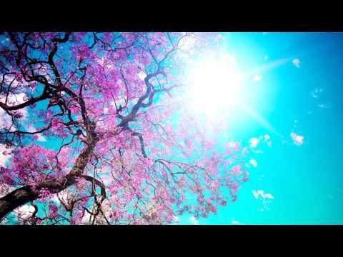 DJ Tatana - Spring Breeze (Martin Roth Summerstyle Remix)