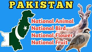 national animal of pakistan | national bird of pakistan | national flower of pakistan |