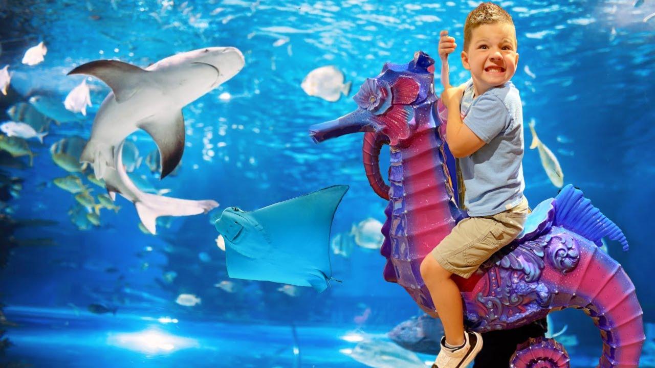 UNDERWATER BOX with SHARKS & STINGRAYS !!! Caleb & Mommy Go to the BRANSON AQUARIUM!