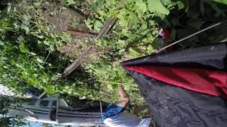 Lodi Parachute Center Plane Crash (after smooth emergency landing)