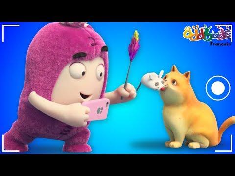 Oddbods Français | Petit Chat | Dessin Animé Drôles Pour Les Enfants