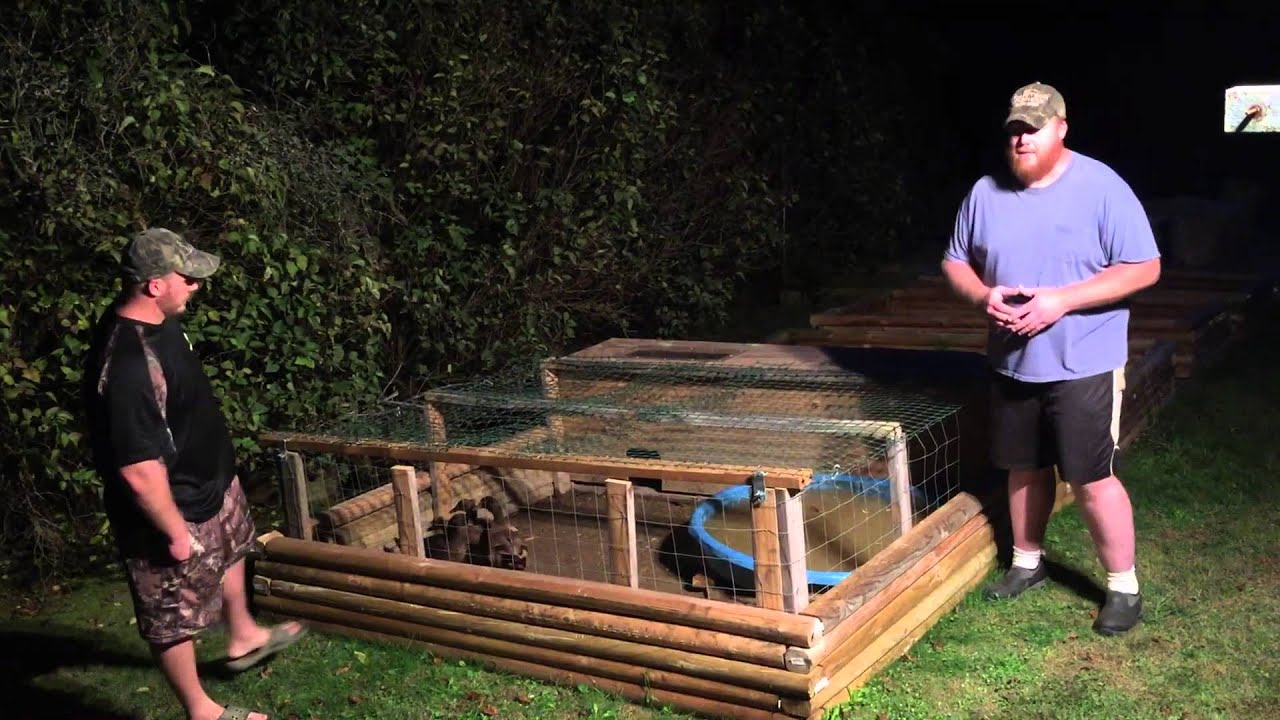 Duck pens 3 youtube for How to build a duck pen