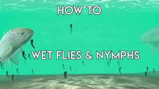 Using Wet Flies & Nymphs - How To