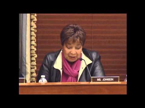 2014.02.27 - Ranking Member Eddie Bernice Johnson (D-TX) - Questions to the Witness Panel