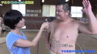 選抜高校相撲大会2014