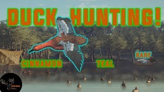 DUCK HUNTING the New CINNAMON TEAL!! *RARE* Call of the Wild  THEHUNTER 2018
