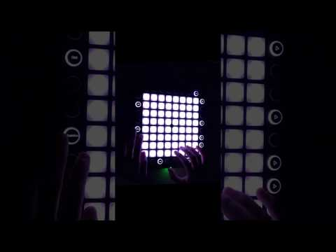 Martin Garrix - Animal clip (Launchpad Cover)