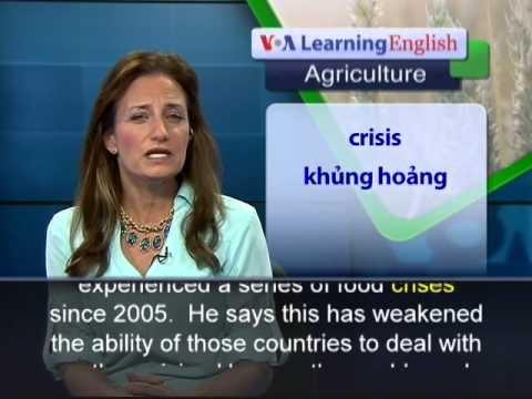 Phát âm chuẩn cùng VOA - Anh ngữ đặc biệt: Sahel Harvest (VOA-Ag Rep)