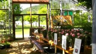 船方農場のRose Garden「バラフェア」(山口県阿東町)