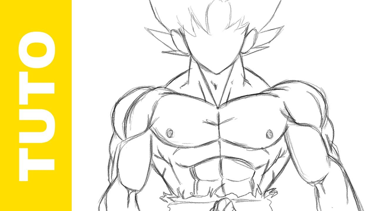 how to draw the body of goku dbz the muscles