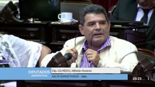 Diputado Olmedo Alfredo Horacio - Sesión 15-02-2017