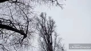 """Мой первый клип./cover/Дима Билан """"Держи""""."""