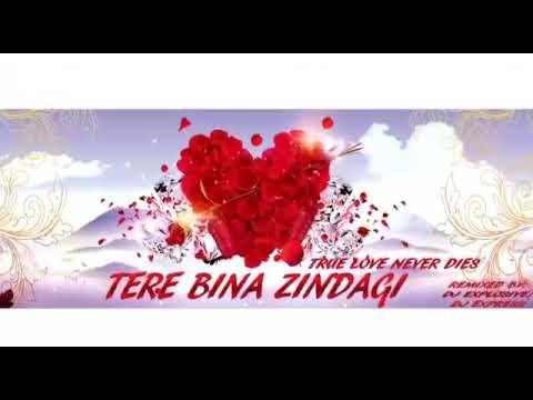 Tere Bina Zindagi Remix By Dj Explosive ft Dj Express