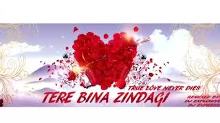 Tere Bina Zindagi Remix By Dj Explosive ft Dj Express