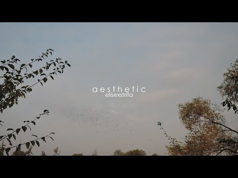 aesthetic - my first video? - i regret everything in this