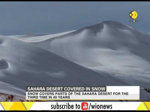 Sahara desert covered in snow