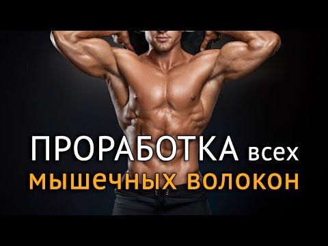 Твой Фитнес